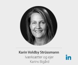 Karin-voldbyny1