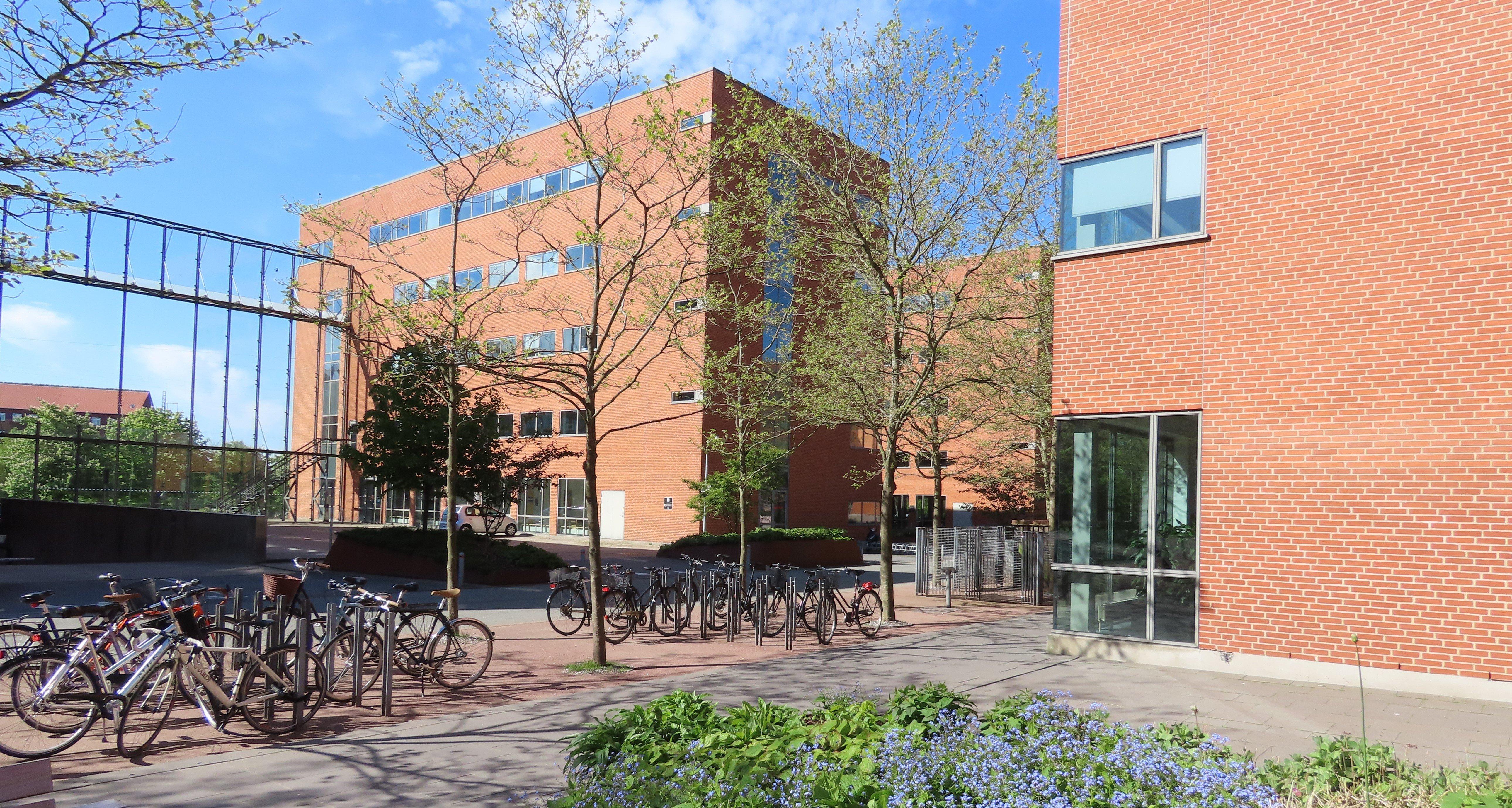 Aarhus University bikes